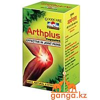АртПлюс при болях в Суставах (ArthPlus BAIDYANATH), 60 кап.