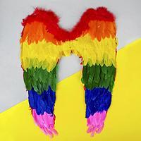 Крылья ангела 60*50 Радужные, фото 1