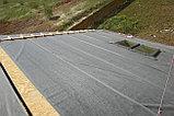 Подкладочный ковёр Руфлекс Synthetic Plus (Маларки) синтетический 50м2, фото 5