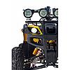 Квадроцикл Raptor Max Pro 250 cc (желтый/камуфляж), фото 3
