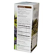 Gaia Herbs, Rapid Relief, сироп чёрной бузины, 160 мл, фото 2