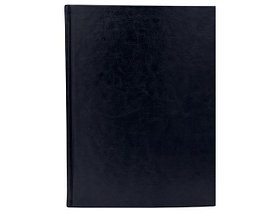 Ежедневник формата B5 HCUD Boss (Босс) темно-синий