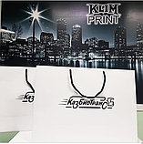 Бумажные пакеты, изготовление бумажных пакетов, изготовление ,печать пакетов в Алматы, фото 2