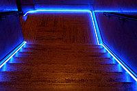 Гибкий неон, 220 в Flex Neon, гибкий неон, холодный неон, флекс неон, неоновый шнур Цвет: синий, фото 2