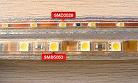 Лента светодиодная SMD 5050, 220v в пвх. Цвет: RGB, фото 6