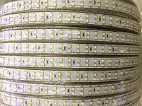 LED лента SMD 3014, 220 v, 240 диодов в пвх оболочке, фото 3