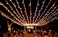 Гирлянды светодиодные, гирлянда светодиодная белт лайт  belt light, изготовление гирлянд белт лайт, фото 4