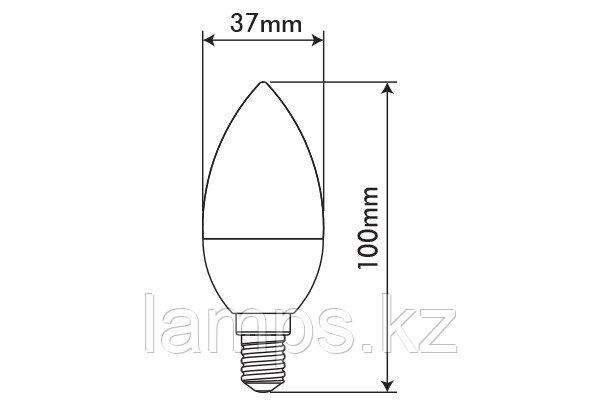 Светодиодная лампа OPTILED/C37/E14/3.5W/4000K/SMD/CBOX, фото 2