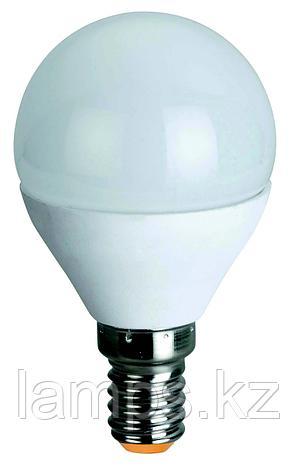 Светодиодная лампа ORBILED-2/6W/SMD/E14/2700K/G45/CBOX, фото 2