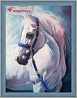 "Картина стразами на холсте ""Грезы белого коня"", 30*40см"