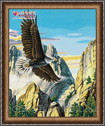 """Картина стразами на холсте """"Горный орел"""", 40*50см, фото 2"""