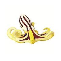 Осьминог сиамский