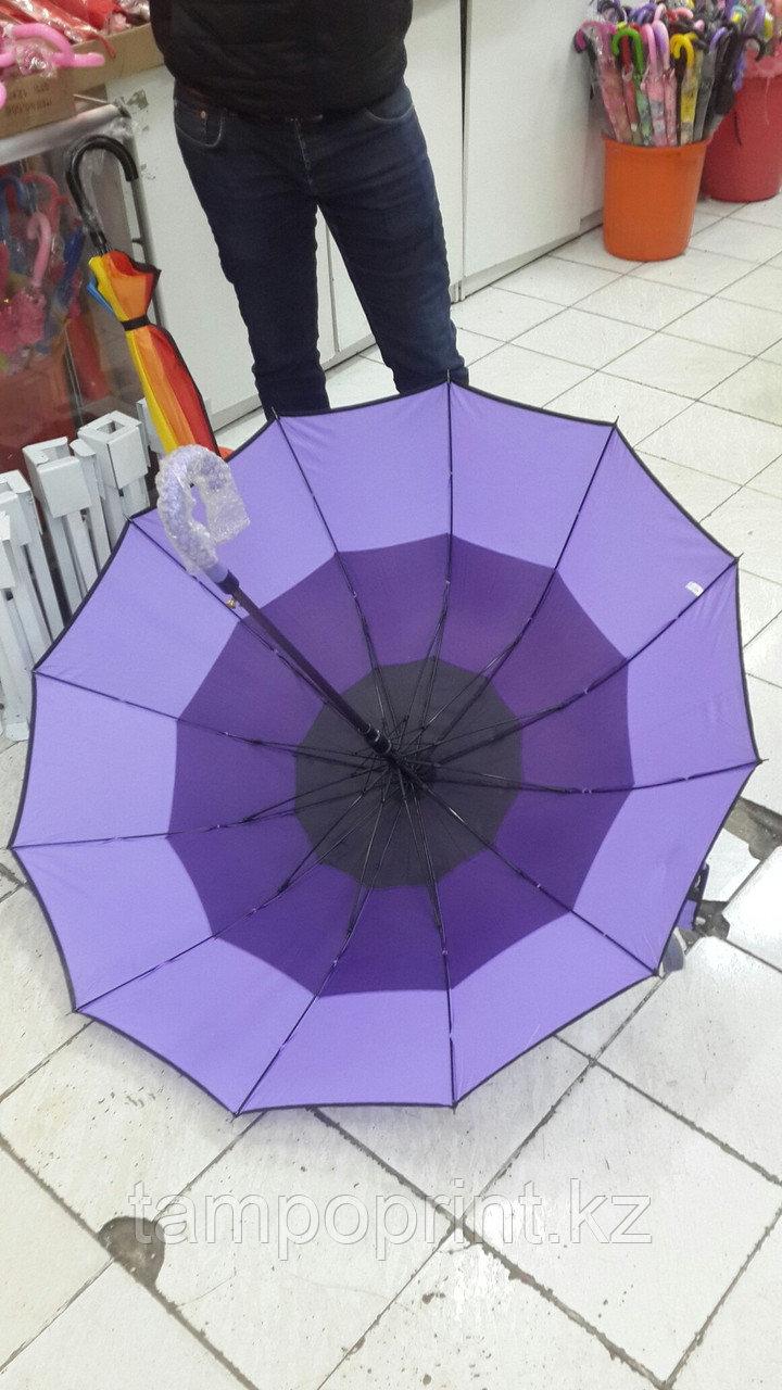 Зонты трехцветный