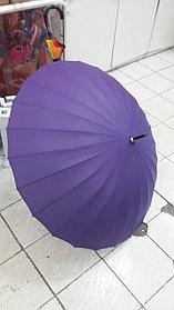 Зонты фиолетовые