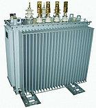 ТМ 1000/10-04 трансформатор силовой, фото 2