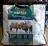 """Одеяло """"Верблюд"""". Облегченное, 200*220 см. Хлопок. Россия., фото 2"""