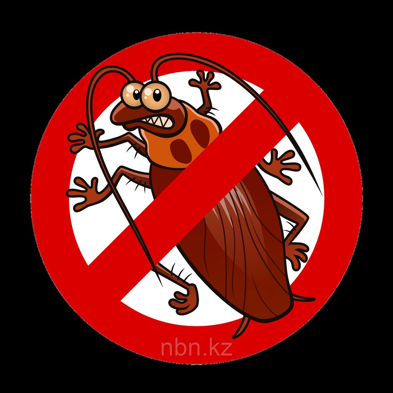 Уничтожение тараканов с гарантией