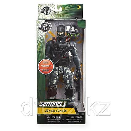 Sentinel 1 Shadow True Heroes
