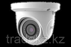 Сетевая IP камера купольная TVT TD-9524S1H (D/PE/AR1)