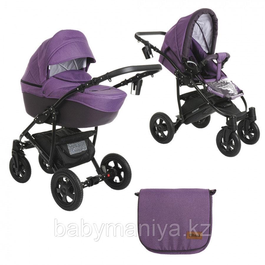Коляска 2 в 1 Pituso Confort Фиолетовый+Кожа Тёмно-фиолетовый Рама Чёрная