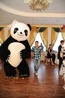 Ростовой надувной панда
