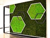 Озеленение коммерческих помещений