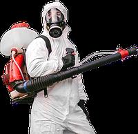 Дезинсекция насекомых, Дезинфекция помещений, Дератизация грызунов