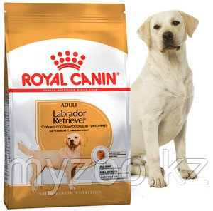 Корм для взрослых собак породы лабрадор Royal Canin LABRADOR 12 kg