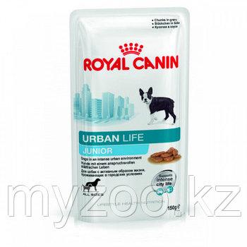 Влажный корм для щенков собак крупных пород Royal Canin URBAN LIFE JUNIOR 10*150 g