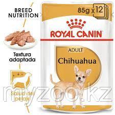Влажный корм для собак породы Чихуахуа Royal Canin CHIHUAHUA 1*85g