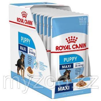 Влажный корм для щенков крупных пород Royal Canin MAXI PUPPY 1*140 g