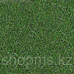 Линолеум IVC Bingo 025 Grass (2.5м/30м/2,8мм(0,2мм)/75 кв.м)