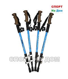 Трекинговые палки для спортивной ходьбы (длина до 135 см)