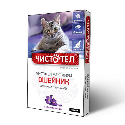 Чистотел ошейник Максимум для кошек фиолетовый, фото 2