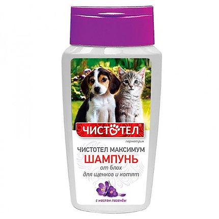 Шампунь Чистотел  для котят и щенков 180мл, фото 2