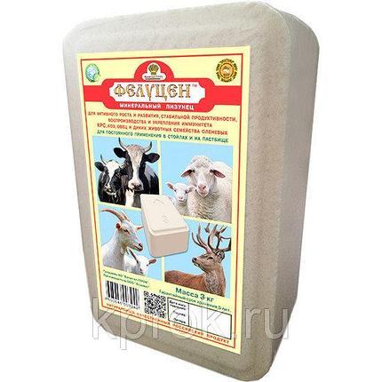 Фелуцен солевой лизунец Универсальный с минералами для КРС, коз и овец 3кг, 1 шт, фото 2