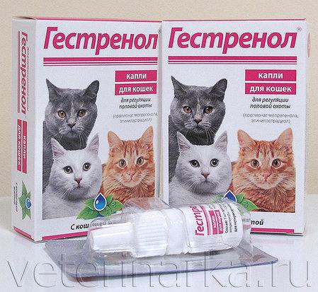 Гестренол капли для кошек, фото 2