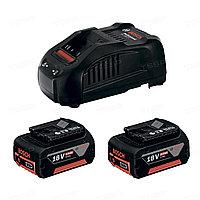 Набор аккумуляторов Bosch 18V 2*5,0Ач + зарядное устройство GAL18 1600A00B8J