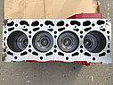 Блок двигателя в сборе CUMMINS ISF 3.8, фото 2