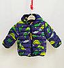 Куртка осенняя с Динозаврами для мальчиков от 2 до 7 лет, синий.
