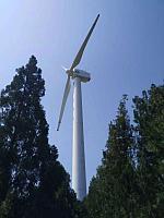 Ветреная Электростанция 100КВТ