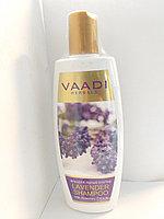 Аюрведический шампунь с лавандой и розмарином, 350 мл, для поврежденных волос, Vaadi,Lavender shampoo, фото 1