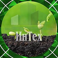 Инвентаризация зелёных насаждений