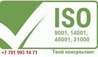 Внедрение международных стандартов ISO: 9001,14001,45001, 31000