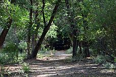 Чарынский национальный парк - тур в автодоме, фото 3