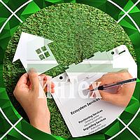 Отчет о выполнении условий природопользования