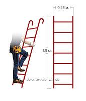 Аренда съемной лестницы