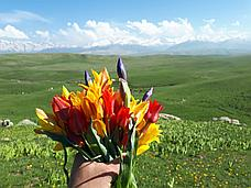 Мототур по плато Ушконыр, фото 3