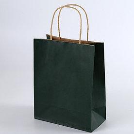 Крафт пакет Зеленый | 20см*25см
