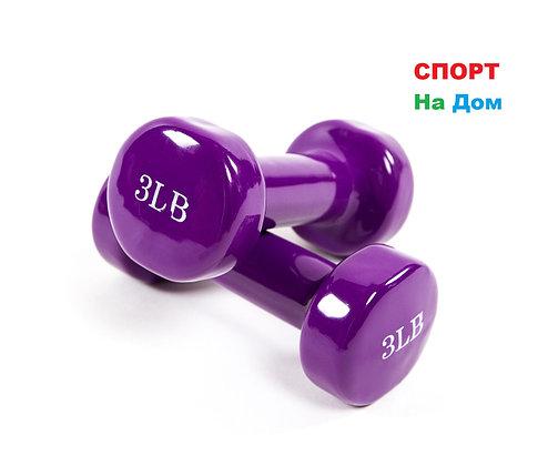 Фитнес гантели (пара, цветные) неопреновые 3LB, фото 2